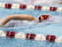 SwimmingPhotoErinPenceTigers