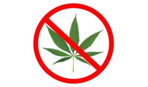 anti-weed